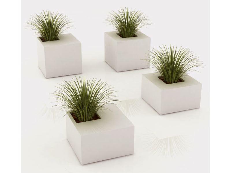 Jardinera Meet